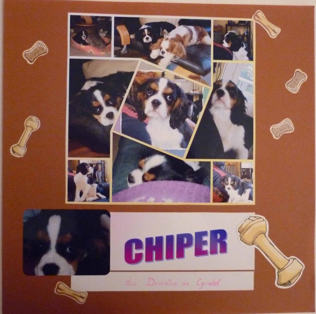 chiper 5 w