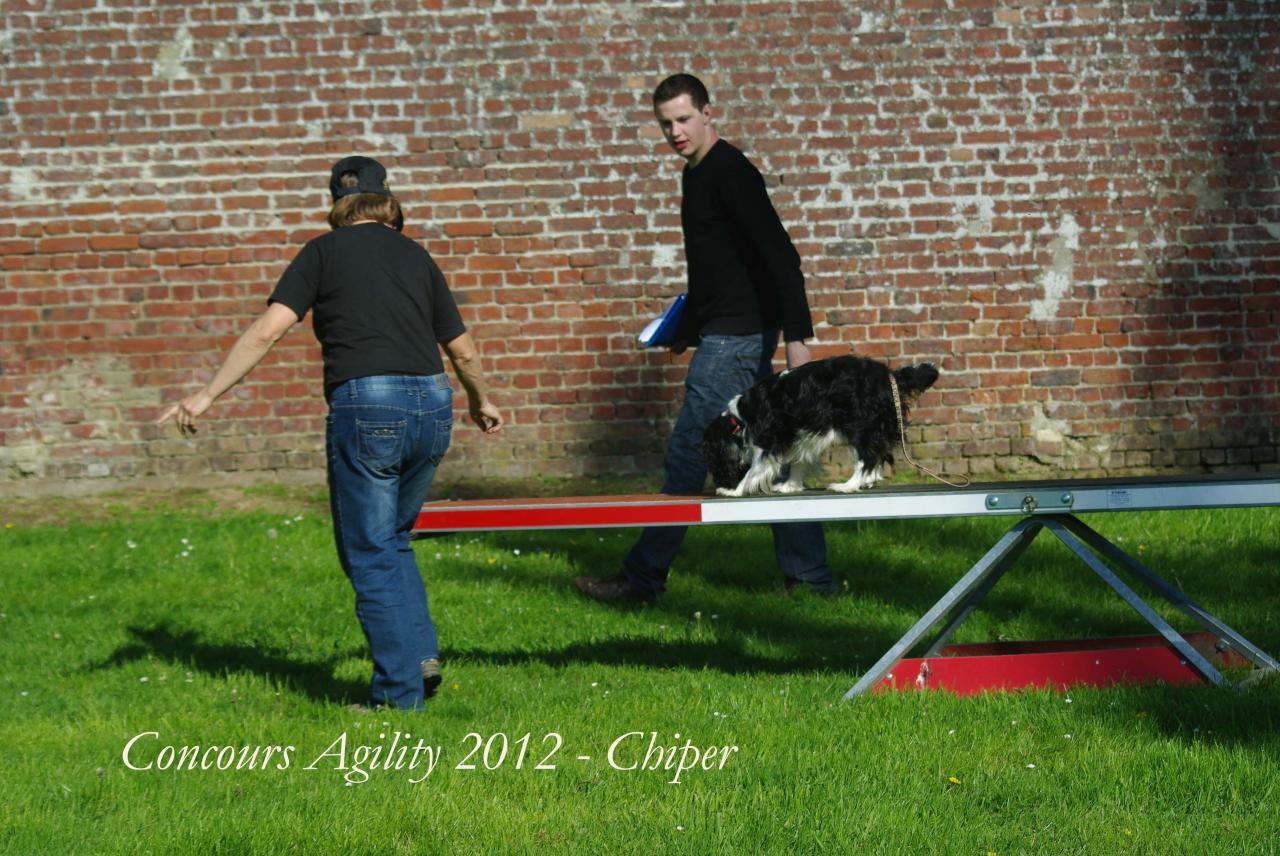 chiper agility 3