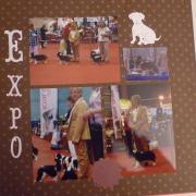 F U expo 2 w