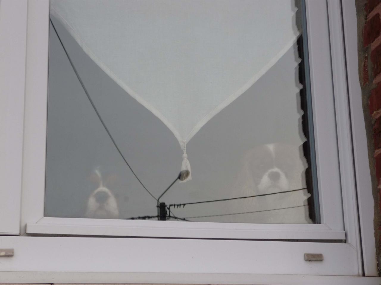 H à la fenêtre